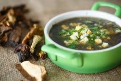 Soupe à oseille avec les champignons secs Photographie stock