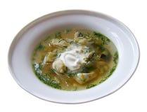 Soupe à poissons Image stock