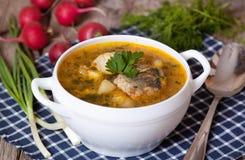 Soupe à poissons dans une cuvette Photographie stock libre de droits
