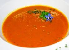 Soupe à potiron Photographie stock