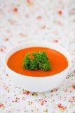 Soupe à potiron. Images stock