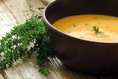 Soupe à potiron et à raccord en caoutchouc images stock
