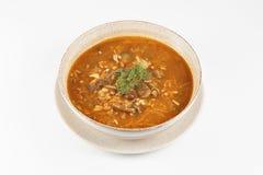 Soupe à Solyanka de champignon Images libres de droits