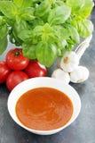 Soupe à tomate et à Basil dans un bol de soupe blanc Image libre de droits