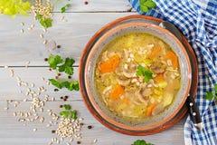 Soupe épaisse avec l'orge perlée, le céleri, le poulet, et les champignons image libre de droits