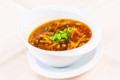 Soupe épicée et aigre chinoise avec le poulet images libres de droits