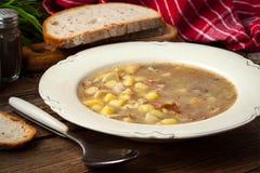 Soupe aigre d'un plat image libre de droits