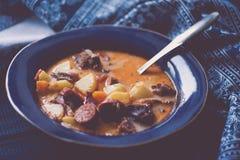 Soupe aigre roumaine avec les pommes de terre et le porc fumé image stock