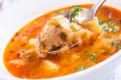 Soupe arménienne avec de la viande Photos libres de droits