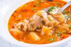 Soupe arménienne avec de la viande Images stock