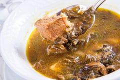 Soupe arménienne avec de la viande Image libre de droits