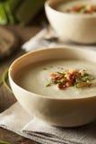 Soupe aux pommes de terre crémeuse faite maison et à poireau Photographie stock