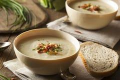 Soupe aux pommes de terre crémeuse faite maison et à poireau Images stock