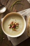 Soupe aux pommes de terre crémeuse faite maison et à poireau Image libre de droits