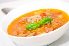 Soupe avec de la viande, des champignons et des légumes Photo stock