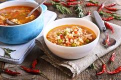 Soupe avec de petits pâtes, légumes et morceaux de viande Photographie stock libre de droits