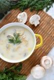 Soupe avec du fromage et des champignons dans un plat jaune Photographie stock