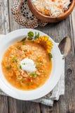 Soupe avec la choucroute et le millet Images stock
