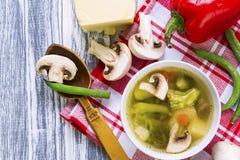 Soupe avec le brocoli, les légumes et les champignons Photos libres de droits