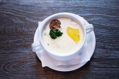 Soupe à champignons dans la cuvette Image stock