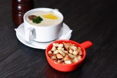 Soupe à champignons dans la cuvette Photographie stock libre de droits