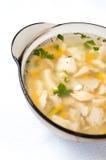 Soupe chaude à poissons image libre de droits