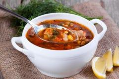 Soupe chaude à tomate avec le poulet dans une cuillère Photographie stock