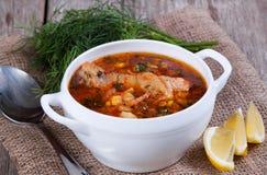 Soupe chaude à tomate avec le poulet dans une cuillère Photos stock