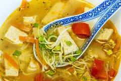 Soupe chinoise avec le tofu photographie stock