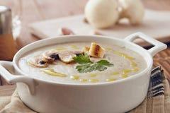 Soupe crème à champignon photographie stock