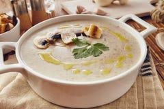 Soupe crème à champignon Photos stock