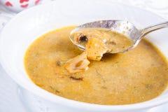 Soupe crème à champignon dans le plat blanc Photographie stock libre de droits
