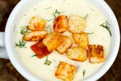 Soupe crème à champignons Photos stock