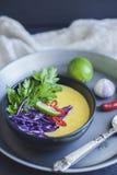 Soupe crémeuse à noix de coco thaïlandaise avec les légumes frais Vegan FO en bonne santé image libre de droits
