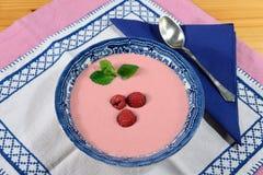 Soupe crème à framboise Photographie stock