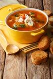 Soupe de Buffalo avec les tomates, le céleri de poulet, les carottes et le che bleu images libres de droits