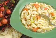 soupe de nouilles chaude faite maison de poulet de cuvette Photographie stock libre de droits