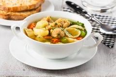 Soupe de nouilles de Vegan avec des gros morceaux de soja Image libre de droits