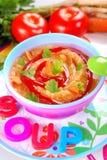 Soupe dense à légume et à tomate pour le bébé Photo stock