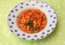 Soupe des carottes Image libre de droits
