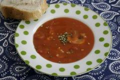 Soupe des tomates avec des champignons Photo libre de droits