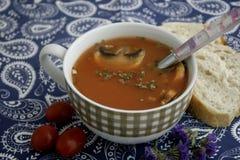 Soupe des tomates avec des champignons Photos libres de droits