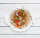 Soupe diététique avec les légumes et la viande photographie stock libre de droits