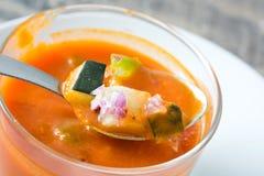 Soupe et ingrédients à Gazpacho sur le bois blanc Image libre de droits
