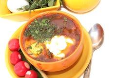 Soupe fraîche avec l'oeuf et les tomates. Images stock