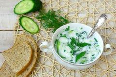 Soupe froide à képhir avec le concombre, les herbes, et l'ail dans la cuvette blanche Images stock