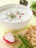Soupe froide à yaourt photos stock