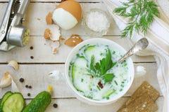 Soupe froide à yaourt avec le concombre, les herbes, l'oeuf à la coque et l'ail Photo libre de droits