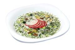 Soupe froide à yaourt d'été avec le radis, le concombre, et l'aneth sur le fond blanc Okroshka Image stock