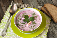 Soupe froide traditionnelle à betterave avec des légumes Photographie stock